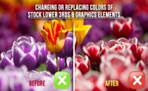 Changing or Replacing Colors of Stock Lower 3rds & Graphics